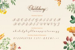 Charlebury Script Font Product Image 6