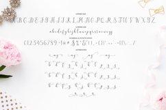 Eritta Script  Font Family Product Image 6