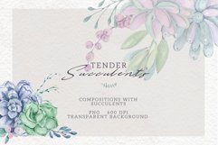 Watercolor Set Tender Succulents Product Image 4