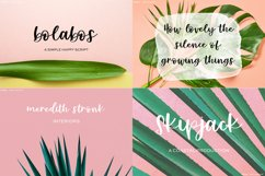 The Cute Crafter's Font Bundle Product Image 5