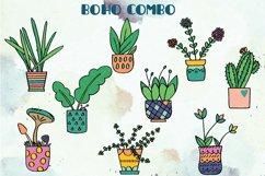 House Plants Color, Cactus, Flower Pot, Hanging Indoor Plant Product Image 3