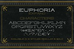 Euphoria Font Family Product Image 8