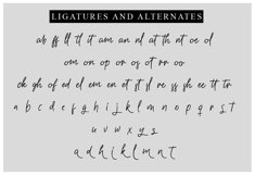 Gasterye Script Product Image 4