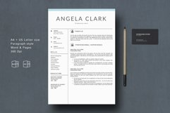 Professional Resume Template Product Image 1