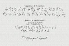 Rosseta Notes - Monoline Signature Fonts Product Image 4