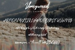 Web Font Honeyweed - Script Typeface Font Product Image 3