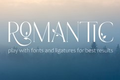 Late Fall - floral ligature serif font duo Product Image 3