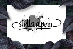 StellaAlpina Product Image 2