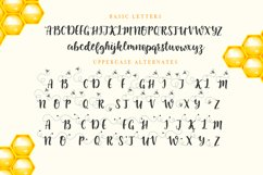 Little Bee duo font Product Image 3