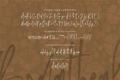 Web Font Bodatheal - A Handwritten Font Product Image 3