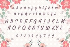 Web Font Princess Product Image 2