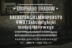 Leophard Font Family Product Image 4