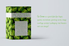 Go Green - handdrawn font Product Image 3