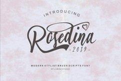 Rosedina - beautyful Stylist brush script Product Image 6