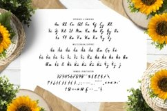Flower Path Font Product Image 3