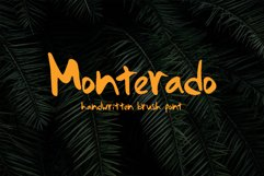 Monterado - Handwritten Brush Font Product Image 1
