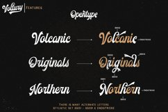 Voltury 4 fonts with extras Product Image 4