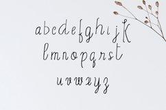 Erica Script Font Product Image 3