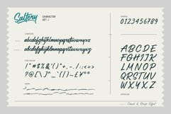 Saltery Brush Font Product Image 4