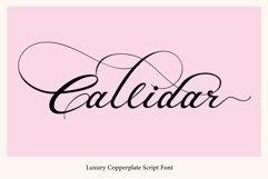 Callidar Product Image 1