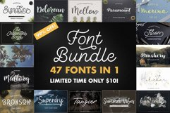 47 IN 1 FONT BUNDLE Product Image 1