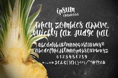 Ipsum Script Product Image 2