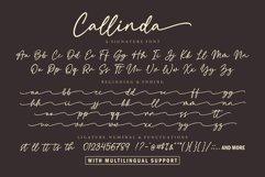 Callinda a Signature Font Product Image 2