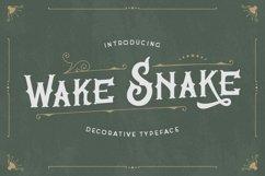 Wake Snake - Decorative Vintage Typeface Product Image 1