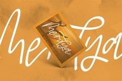 Web Font Antique - A Beauty Script Font Product Image 6