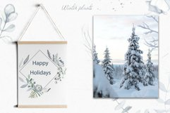 Winter plants watercolor collectoin Product Image 4