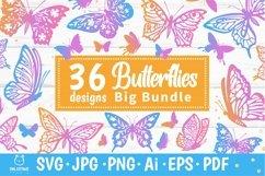 Butterflies SVG Bundle, butterfly PNG, butterflies svg Product Image 1