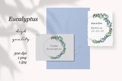 Eucalyptus watercolor wreath, Eucalyptus garland, Greenery Product Image 3