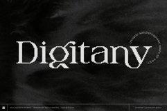 Digitany - Multipurpose Pixel-Serif Font Product Image 1