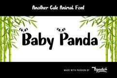 Baby Panda Product Image 6