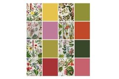 Vintage Botanical Full Page Floral Sheets 8.5 x 11, PDF Product Image 4