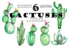 Watercolor Cactuses clipart Product Image 2