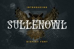 Web Font Sullen Owl Font Product Image 1