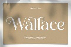 Wallace - Decorative Serif Font Product Image 1
