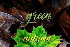 Autumn Script Product Image 5