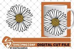 Beauty Daisy svg, Flower svg, Gerber svg, Summer svg Product Image 2