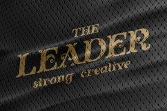Flober decorative serif Product Image 4