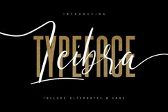 Leibra Typeface Product Image 1