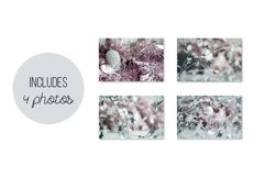Silver, Pale Pink Christmas Backgrounds Photo Set Product Image 4