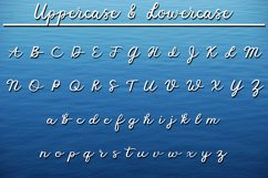 Fisherman Script - A Fun Script Font with Fishing Extras Product Image 2