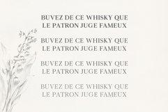 Denish Sans & Serif Duo Font Family Product Image 6