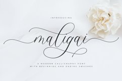 Maligai Product Image 1