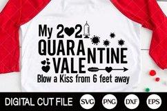 2021 Svg, Quarantine Valentine Svg, Syringe Svg, 2021 Covid Product Image 2