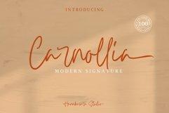 Carnollia Signature Product Image 1