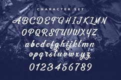Web Font The Dreamer Product Image 3