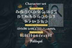 Sindoro - Handmade Script Product Image 6